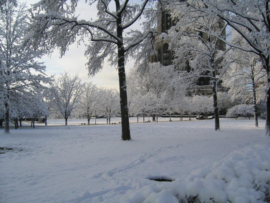 holiday_Winter